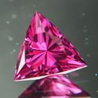 Wild Fish Gems - Precision Cut